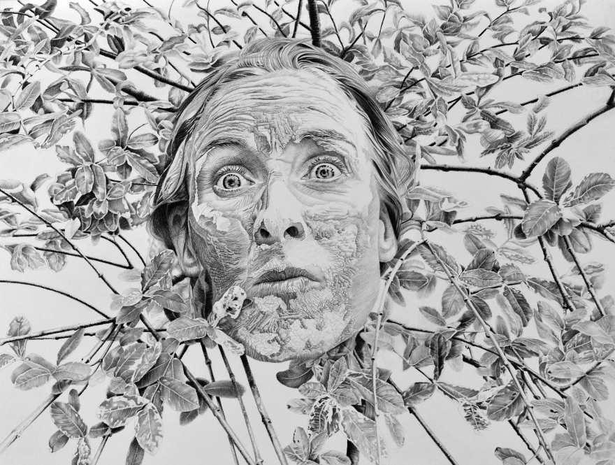 """""""Mon ancêtre Sylvestre"""", crayon sur papier, 50 x 65 cm"""